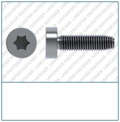 T-Drive  Socket Cap  DIN 7500  FORM E Si