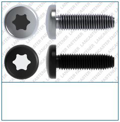 T-Drive  Pan  DIN 7500  FORM C Steel  Zi