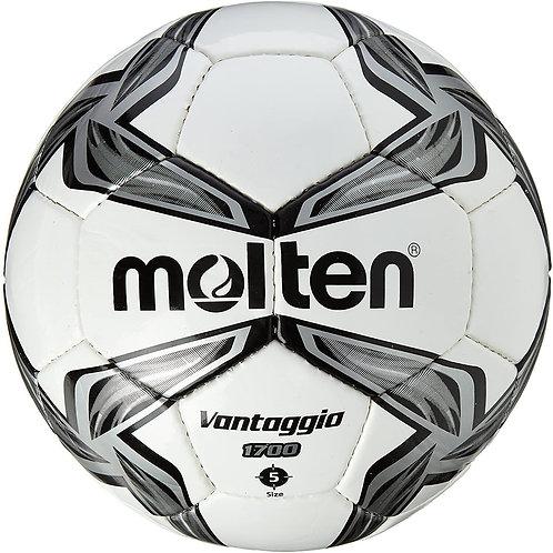 Футбольный мяч Molten размер 5
