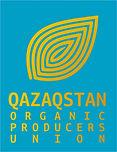QOPU Brandbook.jpg
