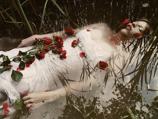 Where the wild roses grow?