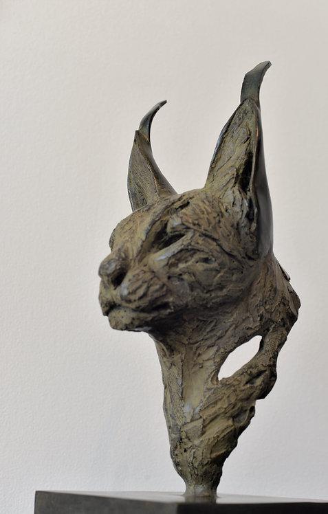 Tête de caracal III par Isabelle Carabantes