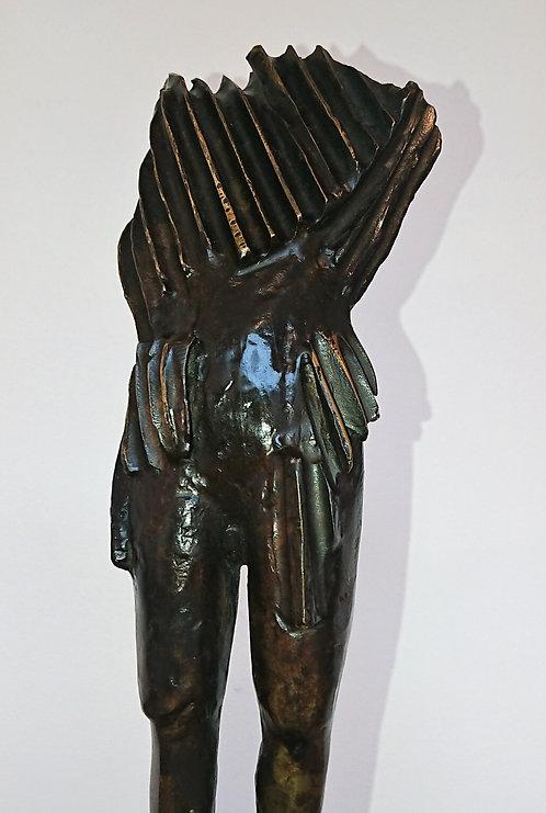 """""""Certitude"""" par Jean-François LAURENT"""