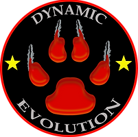 Dynamic Evolution Shooting Black PNG.png