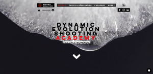 Dynamic Evolution New Design