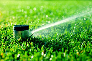 Irrigation Services TCI Sod and Landscape Fort Myers , lehigh Acres, Naples,  Cape Coral