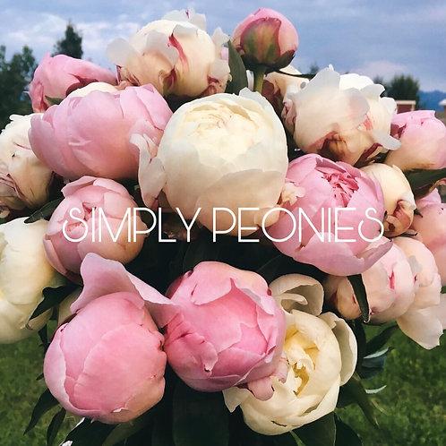 Simply Peonies Large