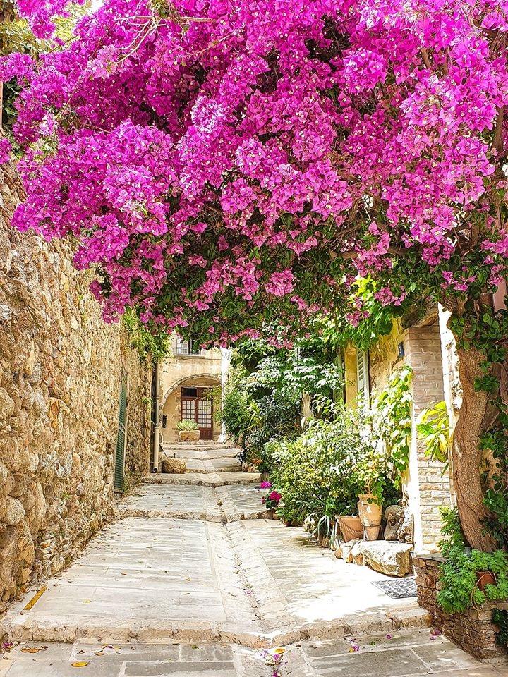 Steegje St Tropez