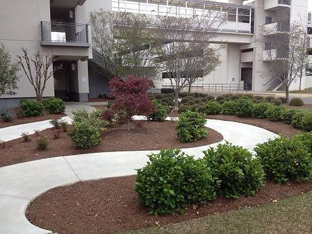 landscaping3.jpg
