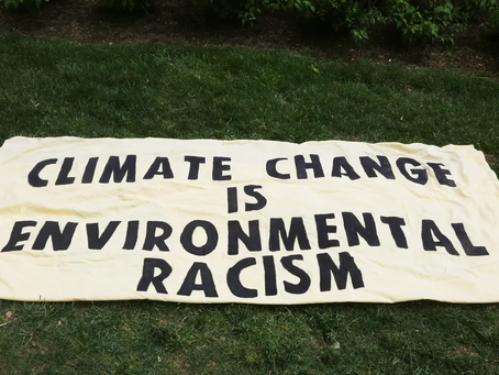 La Comunidad Negra y La Justicia Climática