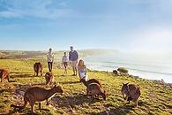 Tourism Produt Appeal