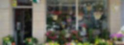 Iris floristeria1.jpg