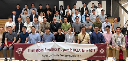 UCLA INTERNATIONAL PROGRAM.jpg