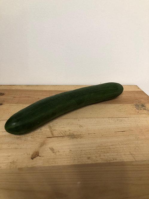 Concombre - pièce
