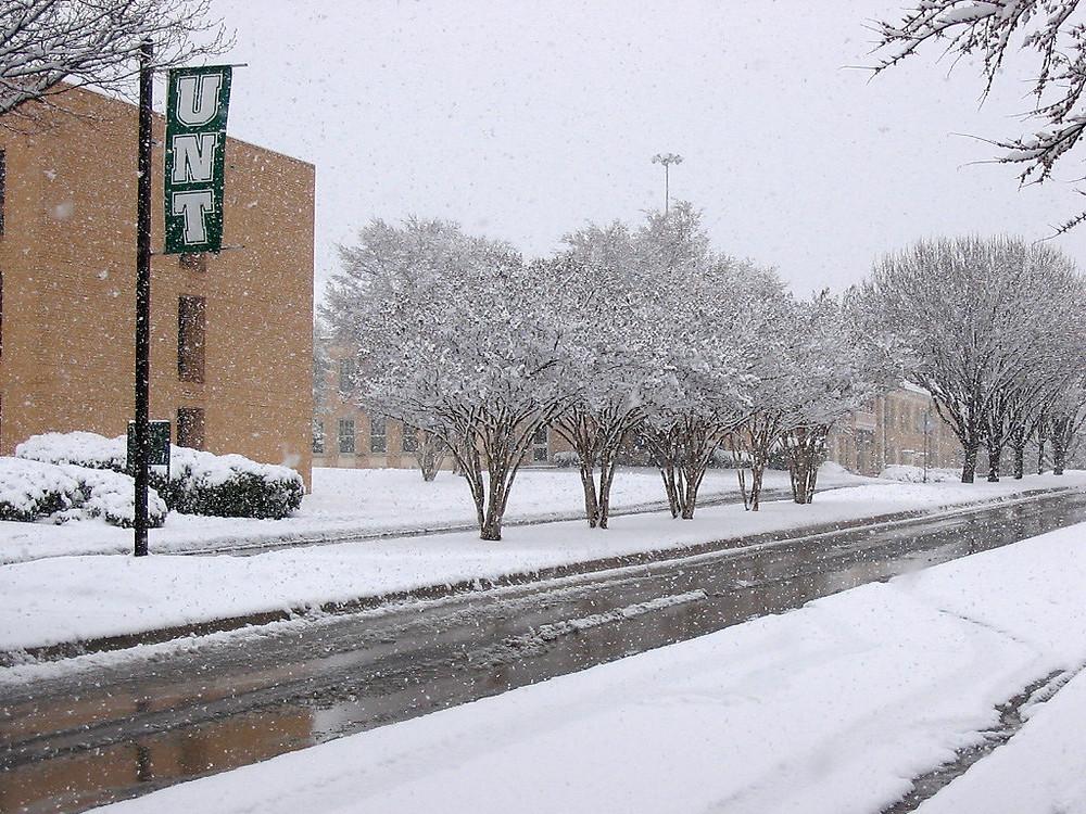 UNT Campus Snow
