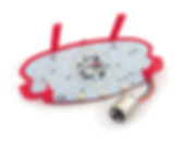 Tail Light LED Conversion Kit for Kawasak ER-5 LSK3301