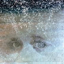 034 Silent Snow, Secret Snow
