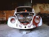 beetle-restoration-1487298-640x480.jpg