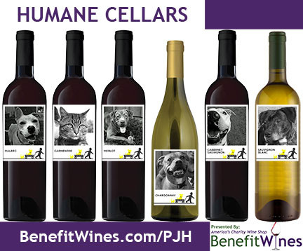 Helping Animals One Bottle at a Time