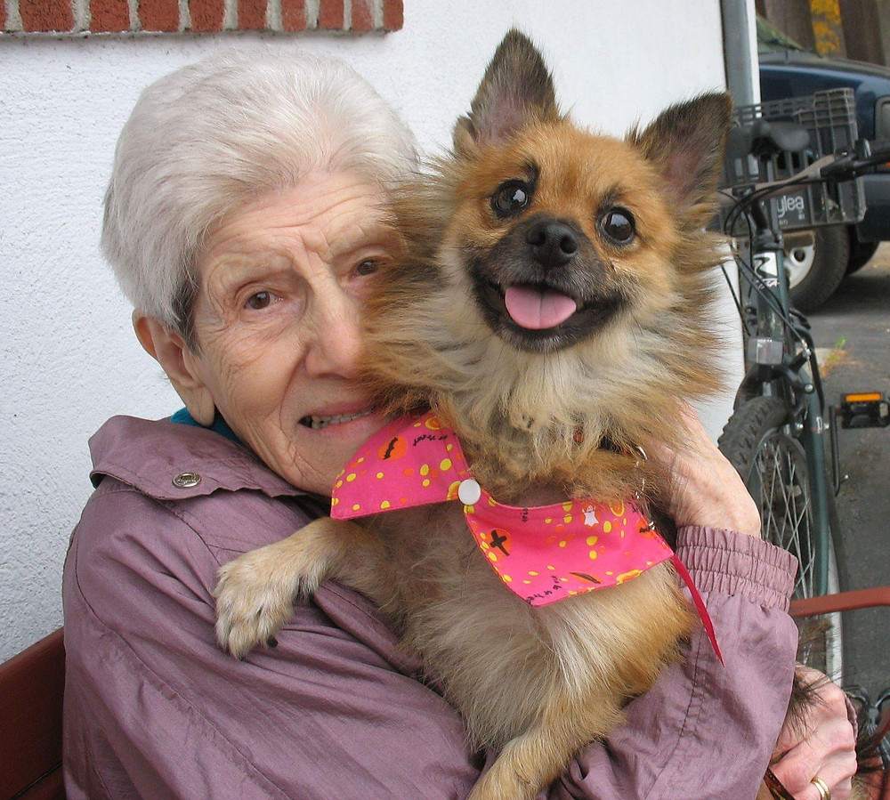 This sweet lady met her faithful companion at the shelter.
