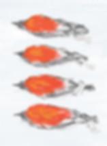 Dead Zoo Birds