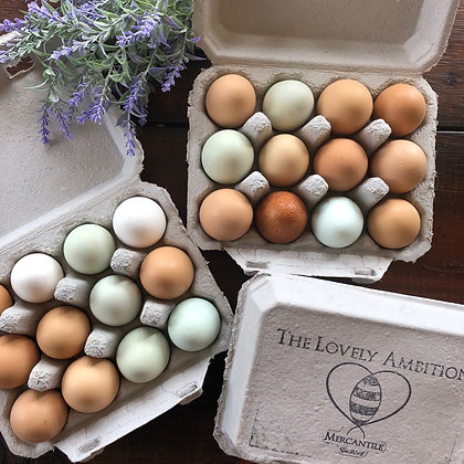 One Dozen Free-Range Eggs