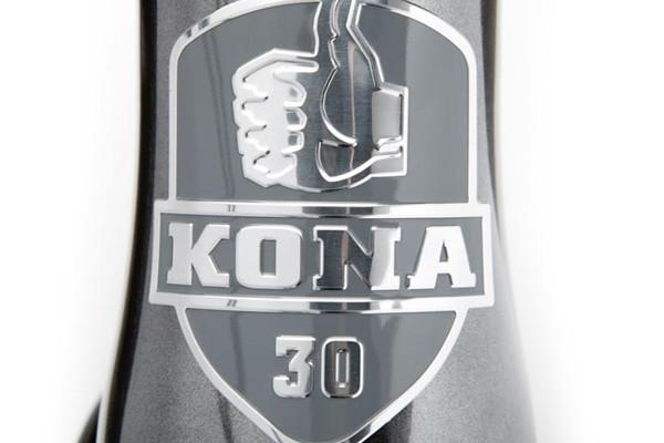 kona-honzo-st-30th-bday-se-2.jpg