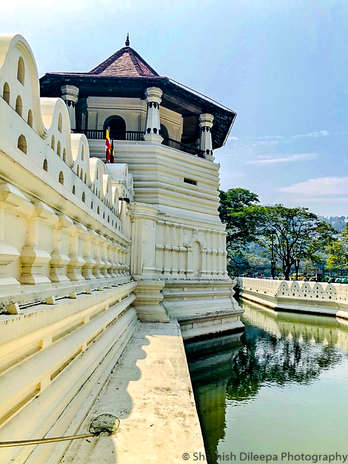 Kandy Tooth Relic.jpg