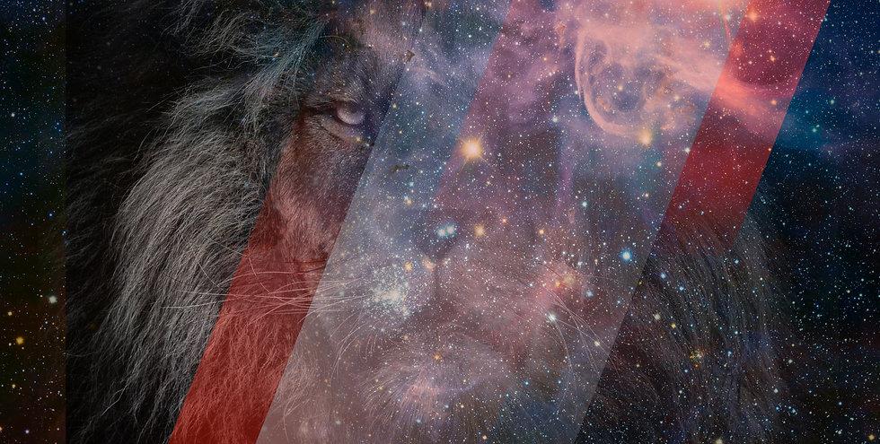 header_lion.jpg