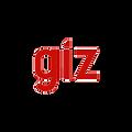 giz - resized.png