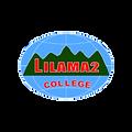 Lilama 2.png