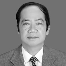 Prof. Dr. Bui The Dung