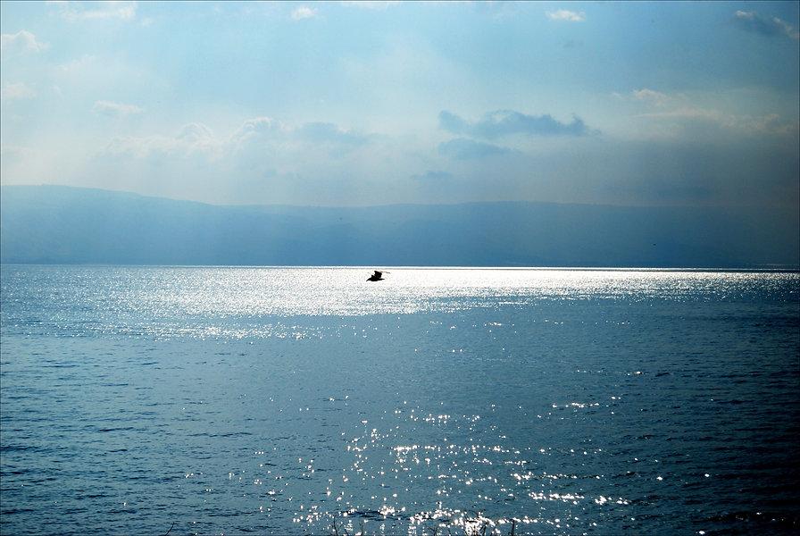 Lago Tiberiade.jpg