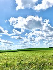 Wisconsin Skyline