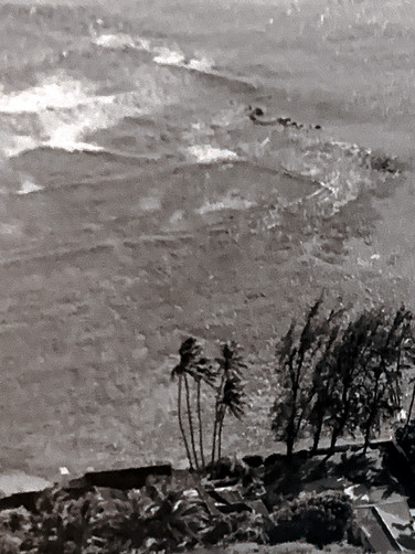 Honolulu Waves