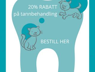 20% RABATT på tannbehandling