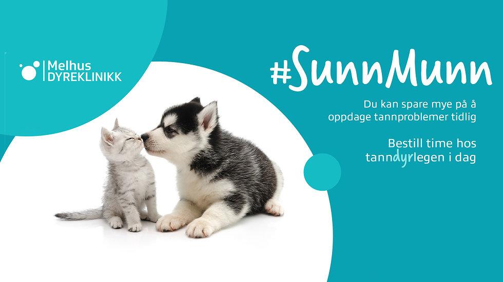 SunnMunn_FacebookHeader.jpg