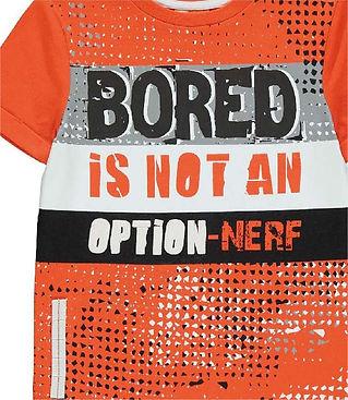 Nerf Images-04.jpg