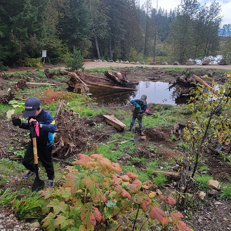 Locals Gettin' Down & Dirty: Planting Bee at Snk'mip Marsh Sanctuary