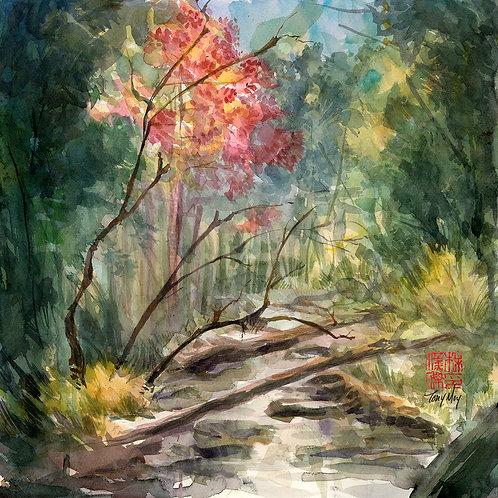 Autumn's Arrival - Original Watercolor Art
