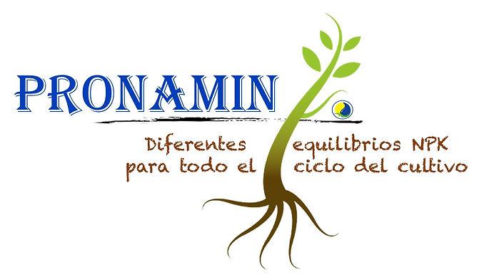 Logo Pronamin Letras.jpg