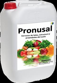 PRONUSAL-GARRAFA-708x1024.png