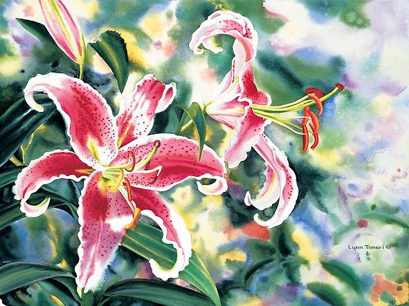4 Stargazer Lilies_edited_edited.jpg