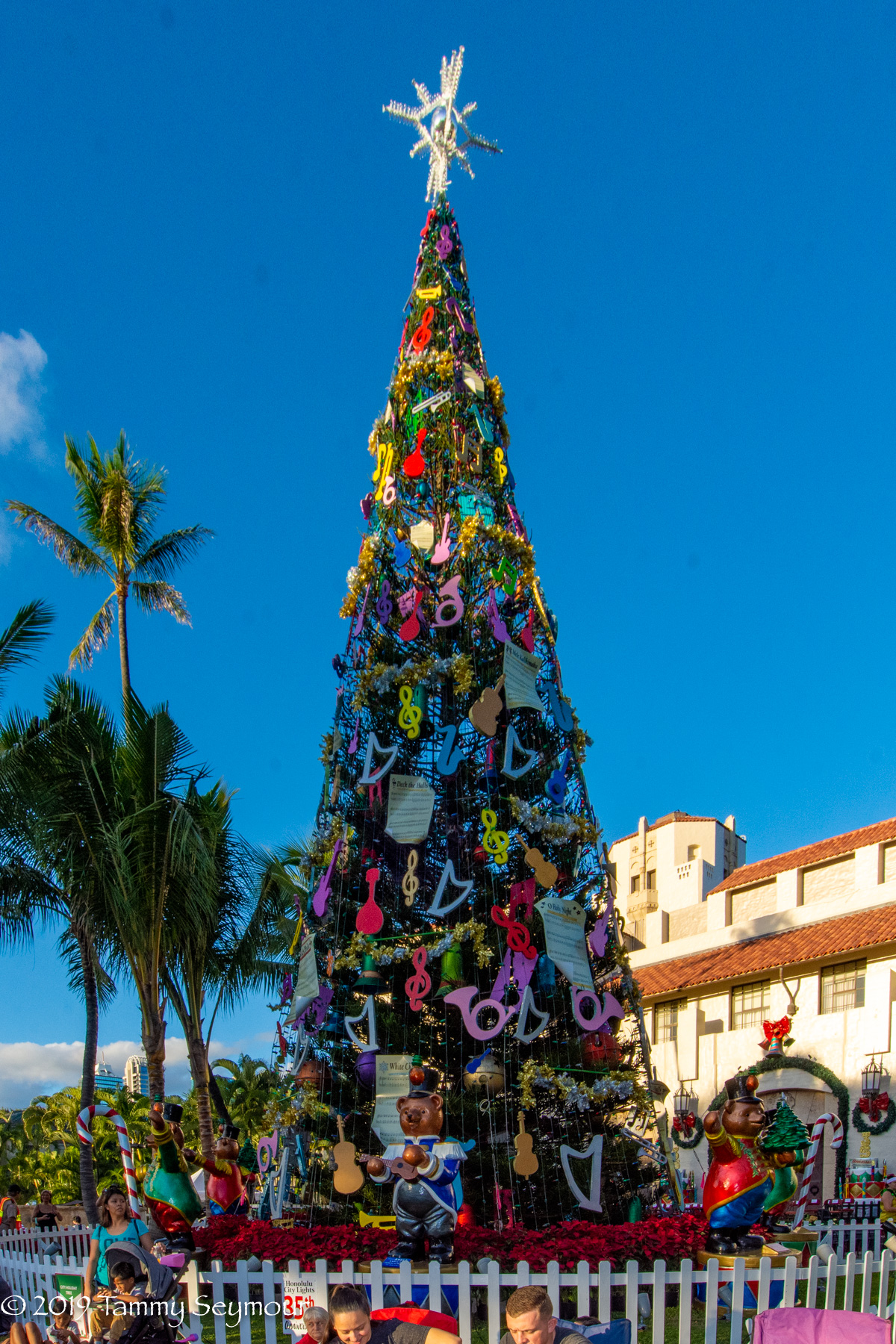2019 Big Day Tree