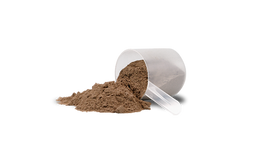 protein-supplement-choclate-flavour-500x