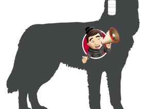 Don Bosco y las mascotas