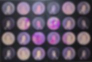 Screenshot 2019-11-19 at 11.59.01.png
