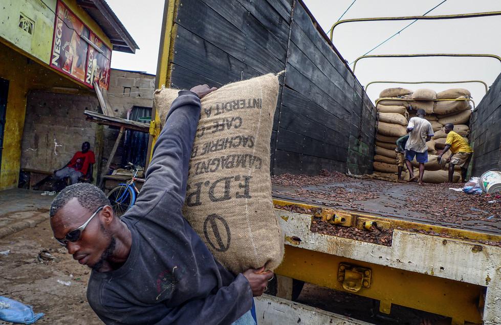 Déchargement des sacs de fèves à Issia, Côte d'Ivoire