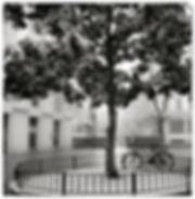 Vienne27.jpg