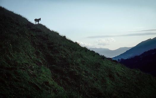Col des Mosses, la veille du départ